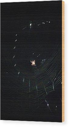 Spider Wood Prints