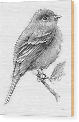 Designs Similar to Least Flycatcher by Greg Joens
