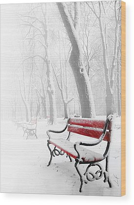 Winter Landscapes Digital Art Wood Prints