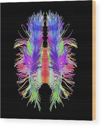 Nervous System Wood Prints
