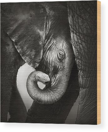 Touch Wood Prints