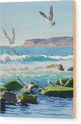 Seagull Wood Prints