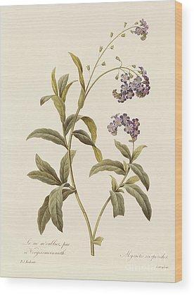 Petal Wood Prints