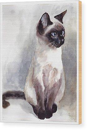 Persian Cat Wood Prints