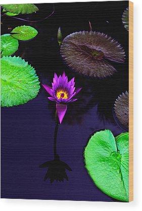 Lilies Wood Prints