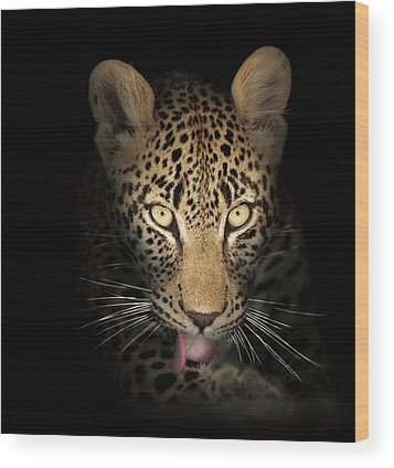Leopard Wood Prints