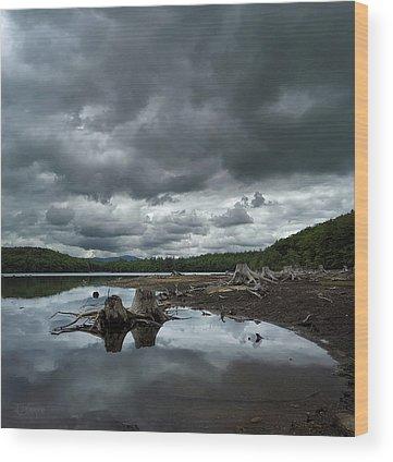 Log Wood Prints