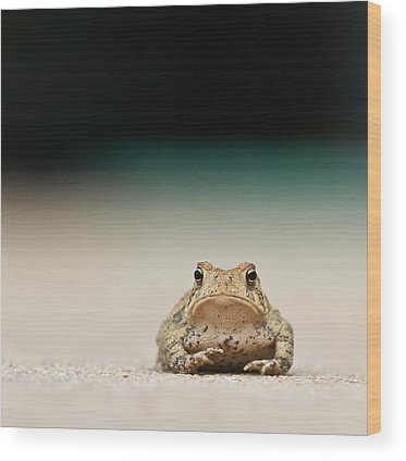Frogs Wood Prints