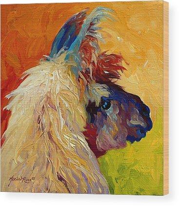 Llamas Wood Prints