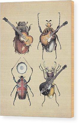 Entomology Wood Prints