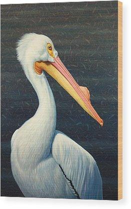 Pelicans Wood Prints