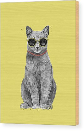 Cool Kittens Wood Prints