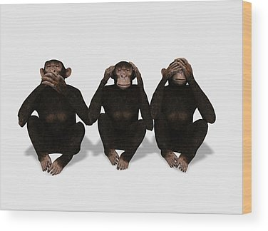 See No Evil Wood Prints