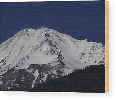 Condor Wood Prints