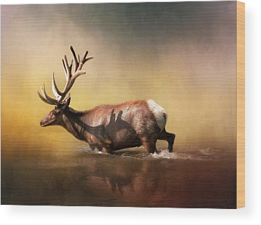 Antlers Wood Prints