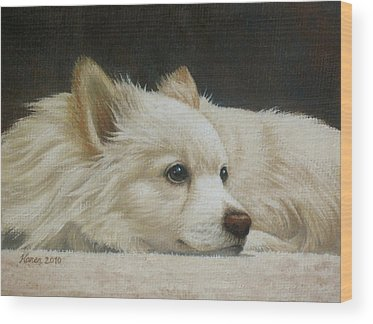 Pomeranian Wood Prints