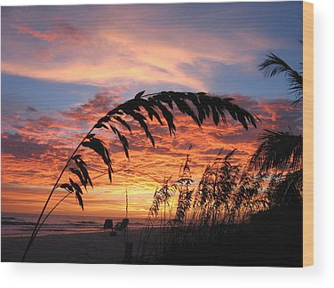 Sanibel Island Wood Prints