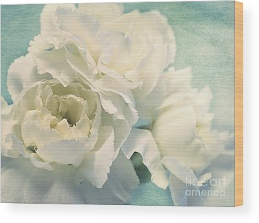 Carnation Photographs Wood Prints
