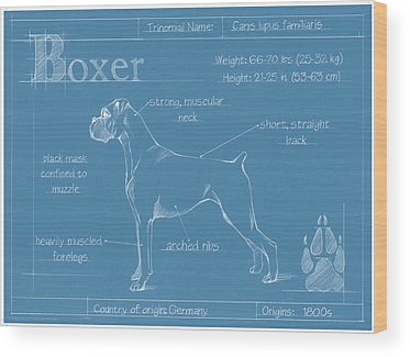 Designs Similar to Blueprint Boxer by Ethan Harper