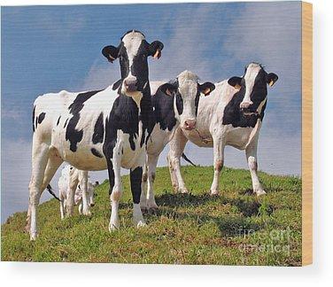 Azores Wood Prints