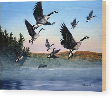 Canadian Goose Wood Prints