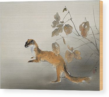 Weasels Wood Prints