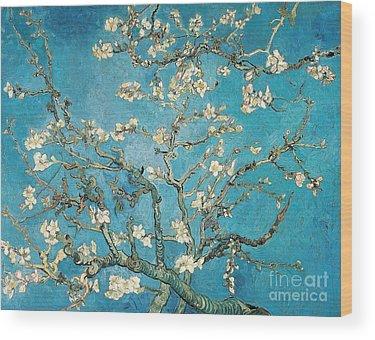 Vincent Wood Prints