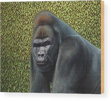 Primate Wood Prints