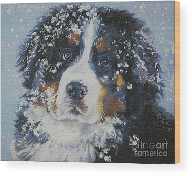 Bernese Mountain Dog Wood Prints