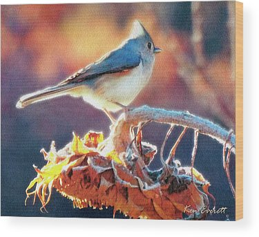 Tufted Titmouse Wood Prints