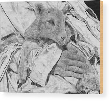 Radiation Wood Prints