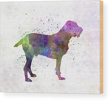 Spinone Wood Prints