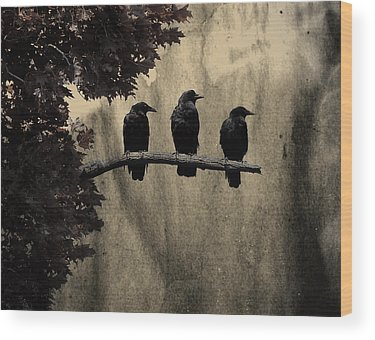 Starlings Wood Prints