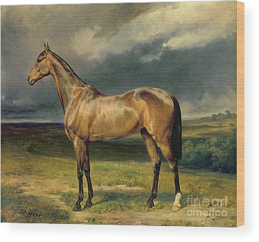 Brown Horse Wood Prints