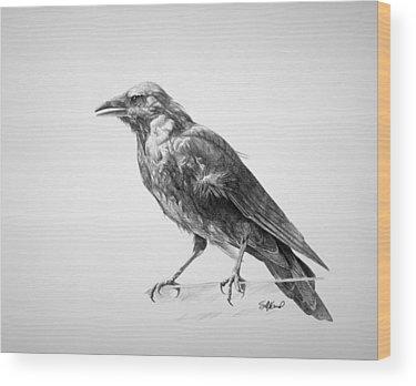 Bird Drawings Wood Prints