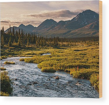 National Wildlife Refuge Wood Prints