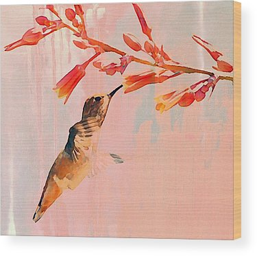 Hummingbird Wood Prints