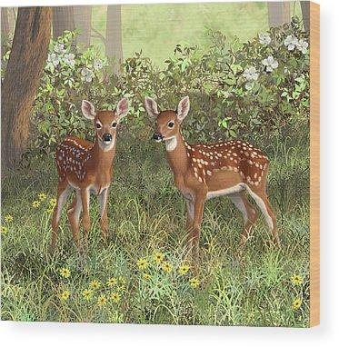Cute Fawn Wood Prints