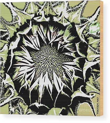 Sunflowers Wood Prints