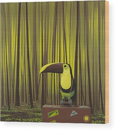 Toucan Wood Prints
