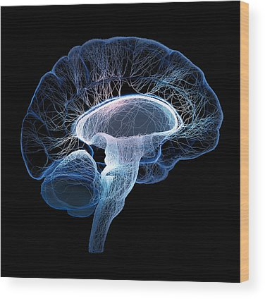 Nervous System Photographs Wood Prints