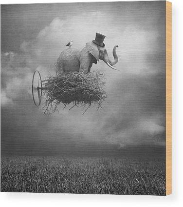 Sky Wood Prints