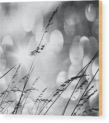 Sun Wood Prints