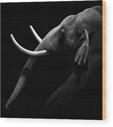 Grayscale Wood Prints