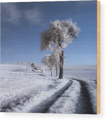 Infrared Wood Prints
