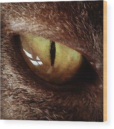 Eye Wood Prints