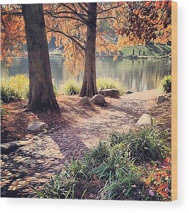 Sweden Wood Prints