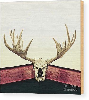 Yukon Wood Prints