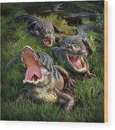 Alligator Wood Prints