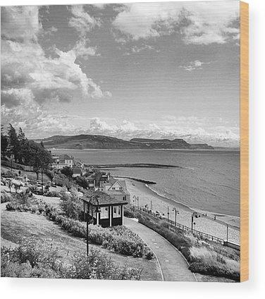View Wood Prints
